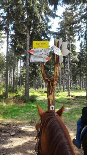2018-05-02-100-szczytow-kozie-siodło